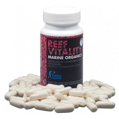 Reef Vitality Fauna Marin