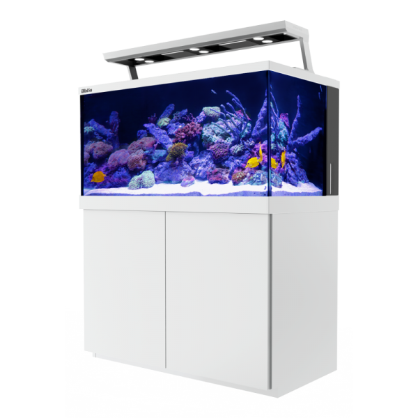 RED SEA - Max S-500 LED - 3 ReefLed - Blanc