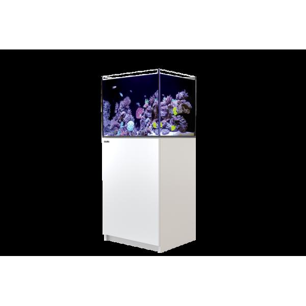 Reefer 170 Blanc (Aqua + meuble) Red Sea