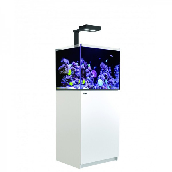 Reefer Deluxe 170 Blanc (1 Hydra 26 HD et 1 potence) Red Sea