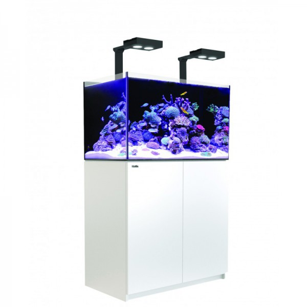 Reefer Deluxe 250 Blanc (2 Hydra 26 HD et 2 potences) Red Sea