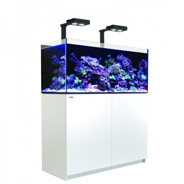 Reefer Deluxe 350 Blanc (2 Hydra 26 HD et 2 potences) Red Sea