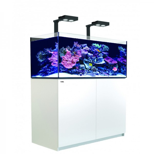 Reefer Deluxe XL 425 Blanc (2 Hydra 26 HD et 2 potences) Red Sea