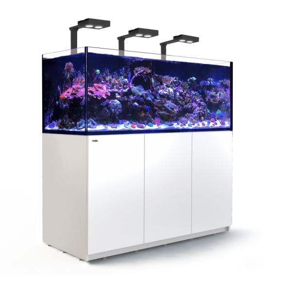 Reefer Deluxe XXL 625 Blanc (3 Hydra 26 HD et 3 potences) Red Sea