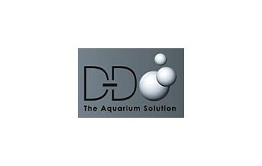 DD Solution
